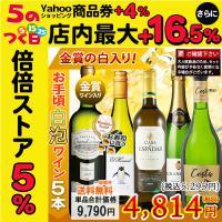 お手頃ワイン「白・泡ワイン」5本セット ☆レイモス ブリュット(白泡:辛口) ☆スパニッシュ・ストー...