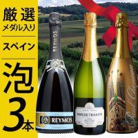 【party】【期間限定】厳選辛口泡3本ワインセット【内容】750ml ☆ポール・シェノー ガウディ...