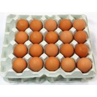 【全品送料無料】【わが街とくさんネット】 ■アレルゲン表示:卵 ■賞味期限:産卵日より21日 ■規格...