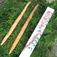 自然薯 じねんじょ 800g 天然 とろろ 山の芋 やまのいも エコファーム星山 茨城県 笠間 お取り寄せ お土産 ギフト プレゼント 特産品 名物商品 お歳暮 御歳暮