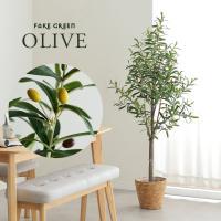 人工観葉植物 フェイクグリーン OLIVE(オリーブ) GRN-17 H152cm 人工植物 観葉植物 おしゃれ フェイク 造花 大型 グリーン オリーブの木 インテリア
