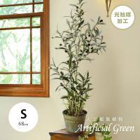 人工観葉植物 オリーブツリーグラスバケット S 約68cm 光触媒加工 空気清浄 人工植物 観葉植物 おしゃれ フェイク 造花 大型 グリーン オリーブの木 インテリア