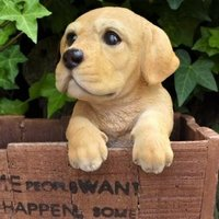 商品詳細商品説明犬の置物 ラブラドール ハンギングドッグでございます。鉢やプランターその他に引っ掛け...