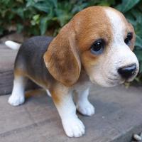 商品詳細商品説明犬の置物 ビーグルの子犬でございます。本物みたいな可愛いわんちゃんです。今にも動き出...