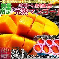沖縄県産の完熟マンゴーは、アーウィン種で通称アップルマンゴーとも呼ばれ、日本での栽培の96%を占める...