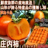 柿には「甘柿」と「渋柿」がありますが、これらの違いは渋み成分「タンニン」が口の中で溶けるかどうかでき...