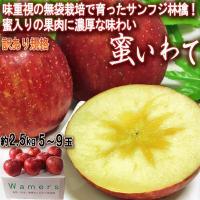 ◆人気品種、フジ林檎〜日本で最も生産される林檎〜  フジは「国光」と「デリシャス」を交配し、1962...