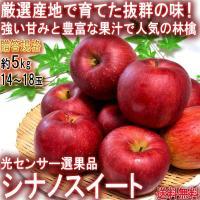 シナノスイート 赤りんご 約5kg 14〜18玉 山形県産 贈答規格 JAさがえ西村山中心 強い甘みと控えめな酸味の林檎!光センサー選果のギフトフルーツ