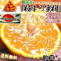 熊本県産 みかん 送料無料 10kg 柑橘類  熊本は、世界最大級のカルデラを有する阿蘇や、美しい島...