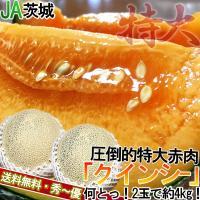 ◆生産量日本一!茨城県産のメロン  茨城県は非常にメロン栽培に適した環境を持つ地域であり、メロンの生...