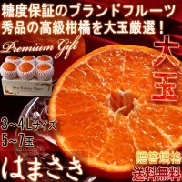 厳選はまさき 5〜7玉入り 3〜4Lサイズ 佐賀県産 大玉規格 JAからつ 贈答品 糖度保証のブランドフルーツ!大玉・秀品厳選のギフト果物