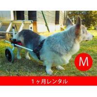 この商品はすでに犬用車椅子をレンタルされている方が対象です。 犬用車イスの1ヶ月レンタル延長です。