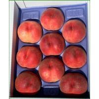 福島を代表する果物・桃。7月中旬〜下旬収穫の早生種3種の中からお好きな品種・時期をお選びください。 ...