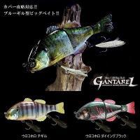 【JACKALL GANTAREL】 魚の本能を刺激するブルーギル型ビッグベイト「ガンタレル」。 ブ...