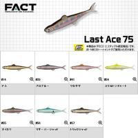 【EVERGREEN FACT Last Ace 75】  福島健が数年に渡って隠し続けてきたスーパ...