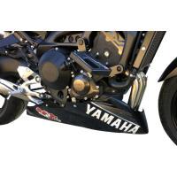 S2 Concept S2コンセプト ROADSTER レーシングエンジンスポイラーカップ YAMAHA MT-09
