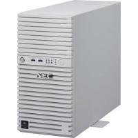 Express5800/T110i(2C/G4560/8G/3F/F)|webshop-sakura
