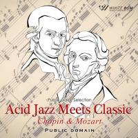 BGM CD 著作権フリー 店内 音楽 <名曲>アシッドジャズミーツクラシック -ショパン&モーツァルト-(4088) whitebgm