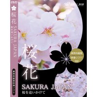 4K撮影 業務用鑑賞映像 DVD「桜花 −SAKURA JAPAN−  桜を追いかけて」著作権フリー・商用可・空間演出・ハイビジョン・業務用ヒーリングビデオ|whitebgm