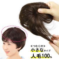 ウィッグ ヘアピース  人毛100% 円形脱毛症 部分ウィッグ かつら 送料無料 増毛 白髪隠し トップ 5009a-straight