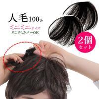 ウィッグ ヘアピース  人毛100% 円形脱毛症 部分ウィッグ かつら 送料無料 メッシュ kz1