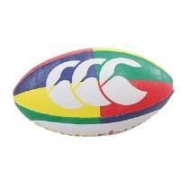 練習に使用できるミニボールです。※空気が入り切っていない場合、押すと空気が抜けますが不良品ではなく、...
