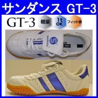 アッパー合成皮革素材の安全靴GT-3。 1トンの重量にも負けない鉄先芯仕様のsundance安全スニ...