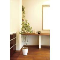 【送料無料・ポイント10倍】《アートグリーン》《人工観葉植物》光触媒 光の楽園 フィカスブランチツリー1.3