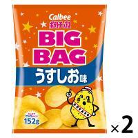 カルビー ポテトチップスビッグバッグうすしお味 170g 1セット(2袋)