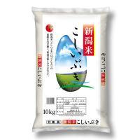 精白米 新潟県産こしいぶき 10kg 令和元年産 米 お米