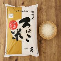 発送日精米 無洗米 精米したて ろはこ米 新潟県産こしいぶき 5kg 令和元年産 米