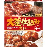 アウトレット ハウス食品 大釜仕込みカレー 中辛 1セット(170g×3個)