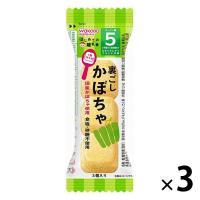 5ヵ月頃から WAKODO 和光堂ベビーフード はじめての離乳食 裏ごしかぼちゃ 2.4g 1セット(3個) アサヒグループ食品