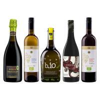 ワインセット 厳選イタリアオーガニックワイン 5本セット モンテ物産