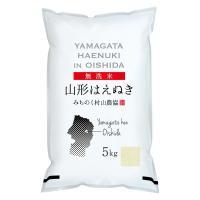 無洗米 山形県産はえぬき 5kg 令和元年産 米 お米