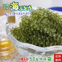 沖縄県産の海ぶどう。化粧箱なし、業務用としてもどうぞ。 「海ぶどう」はビタミンやカルシウム、鉄などの...
