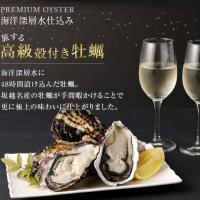 室戸市 ふるさと納税 殻付き牡蠣旅する牡蠣プレミアムオイスター室戸海洋深層水 坂越8~10個入り