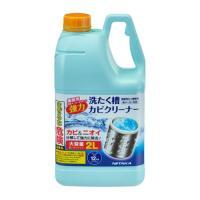 ニイタカ SSC-01 縦型洗濯機用 洗たく槽カビクリーナー 洗浄液 大容量 2L