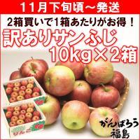 送料無料&期間限定セールで480円OFF! 訳あり品まとめ買いで、美味しいりんごが10kgあたり2,...