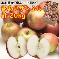 訳あり品まとめ買いで、美味しいりんごが10kgあたり2,214円の最安値! 見た目は良くありませんが...