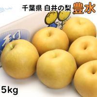 送料無料! 和梨の生産量日本一の千葉県、その中でも一番生産量が多いのが白井市です。 白井の梨栽培は明...