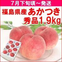 送料無料! 全国でも有数の桃の産地・福島県福島市飯坂町で栽培された、樹上完熟で甘さたっぷりのあかつき...