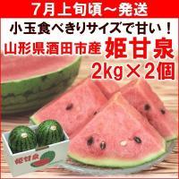 送料無料! 日本三大砂丘の一つ・庄内砂丘で栽培された、小玉で食べやすいサイズのすいか「姫甘泉(ひめか...