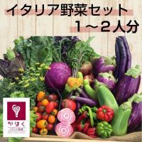 イタリア野菜5〜6種類<br><br>[野菜][かほくイタリア野菜][JAN...