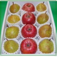 山形特産の芳醇なラフランスとサン・ふじりんごを詰め合わせにして送料無料でお届け致します。こちらの商品...