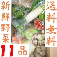 西日本産野菜の詰め合わせ。11点入って送料込2890円。 ほうれん草、玉ねぎ、大根(山口県産)なす、...