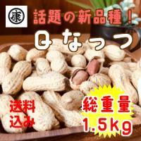 千葉県産 落花生 殻付き Qなっつ 1.5kg 500g×3袋