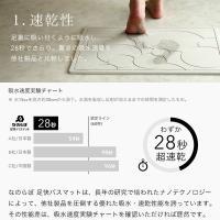 日本製 珪藻土バスマット なのらぼ 足快バスマット Made in Japan [57.5×42.5cm] 全8柄 レギュラーLサイズ 速乾 吸水 足ふきマット 珪藻土マット 母の日|yamayuu|04