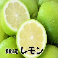 めずらしい国産(和歌山産)のレモン。 ノー防腐剤・ノーワックスだから皮まで安心してお使いいただけます...