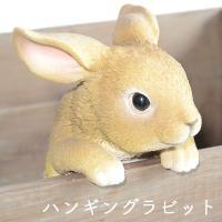 ウサギの置物 ハンキングラビット サイズ:W14×D13×H18cm 材質:レジン 生産国:中国 ポ...